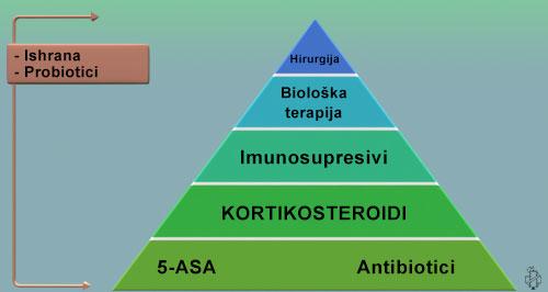terapija ulceroznog kolitisa, 5-asa, 5asa, antibiotici, nsail, imunosupresivi, bioloska terapija, hirurgija