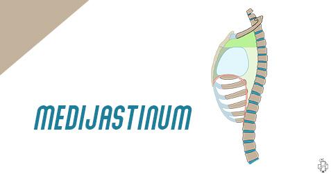 mediastnum